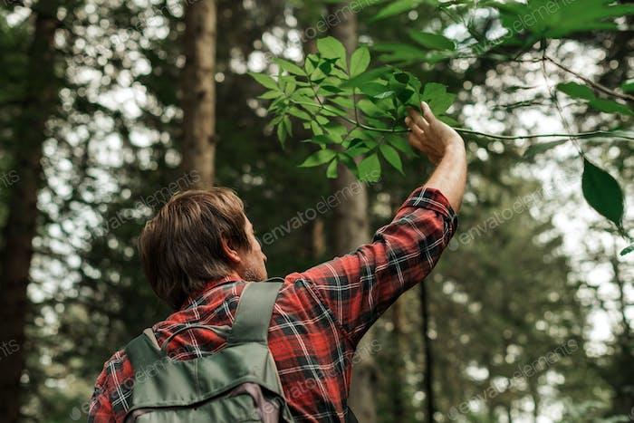 Mann Wandern im Wald allein auf aktiven Sommerurlaub
