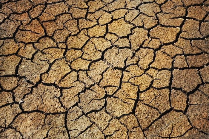 Hintergrund eines sehr getrockneten Bodens im Sommer