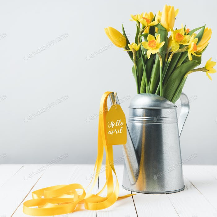 beautiful yellow daffodils and tulips in watering can on grey