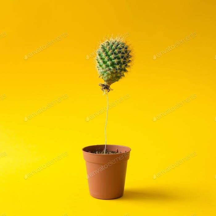 Kaktusballon im Blumentopf. Kreatives Minimalkonzept.