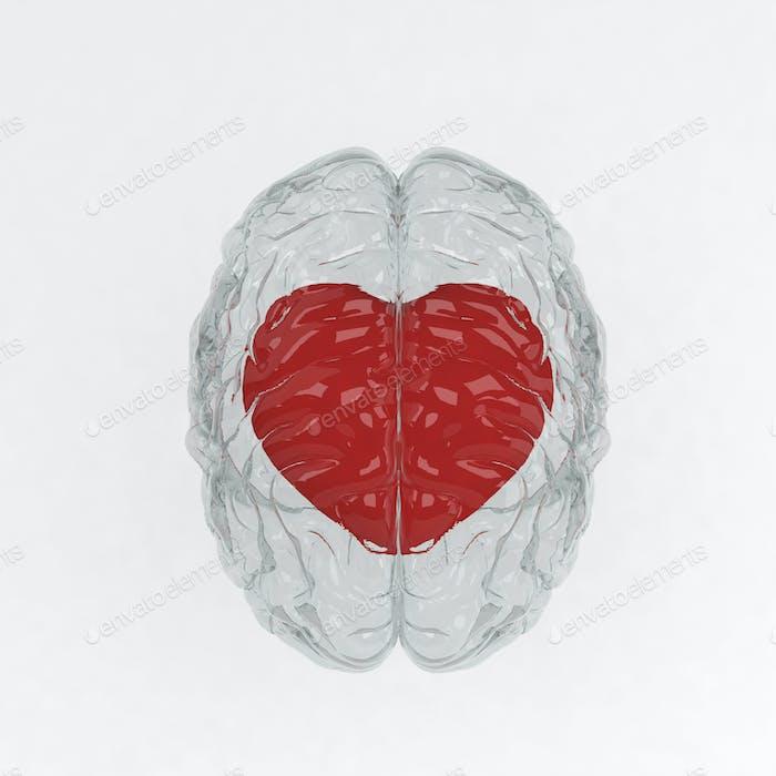 Red heart inside glass brain. 3D illustration