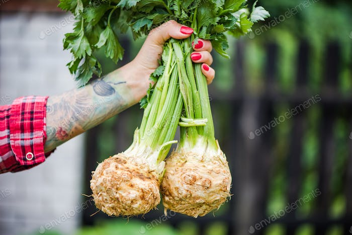 Tattooed millennials woman holding celery in garden