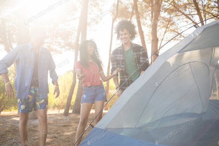 Happy friends standing by tent