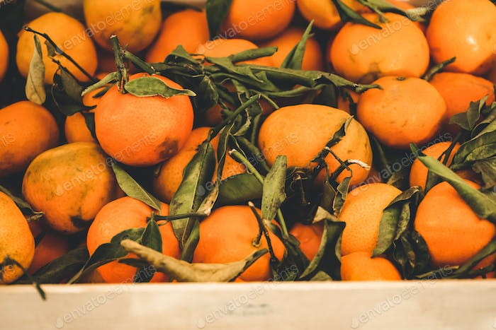 Valencia, Spain, delicious seasonal clementines