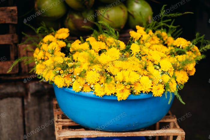 yellow chrysanthemum  at local vietnamese market