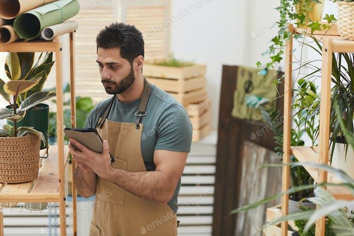Bärtiger Mann Pflege für Zimmerpflanzen