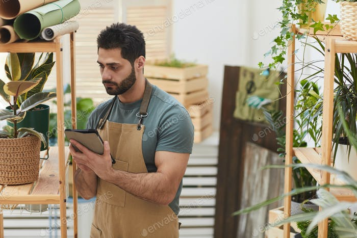 Bearded Man Caring for Houseplants