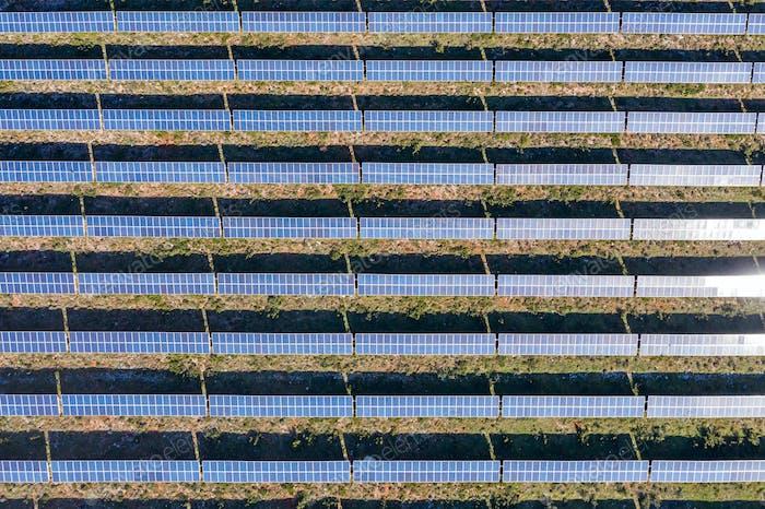 Sonnenkollektoren Kraftwerk Drohne Luftaufnahme von oben. Alternative Konzept zur grünen Energieerzeugung