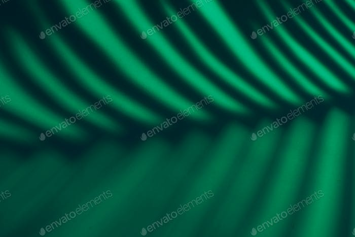 Beautiful monstera leaves shadow colored background in artificial light