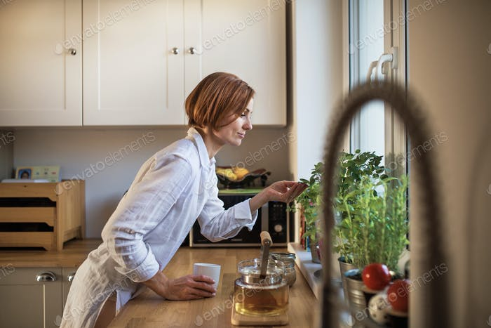 A young woman with cup of coffee standing indoors in kitchen, looking at plant.