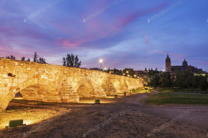 Catedral Nueva de Salamanca and Roman Bridge