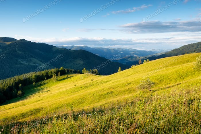 Field and mountains in valley. Natural landscape at the summer time