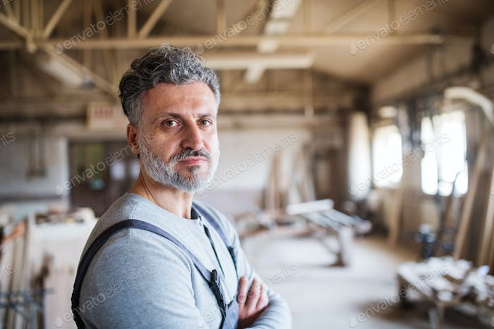 Portrait of a man worker in the carpentry workshop.