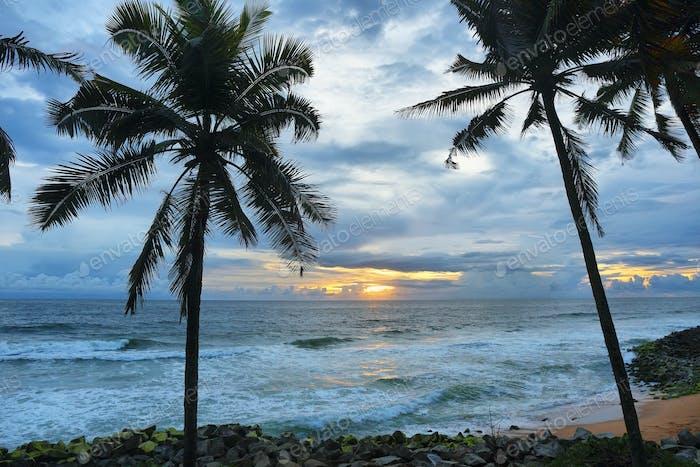 Varkala tropical beach at sunset, Kerala, India