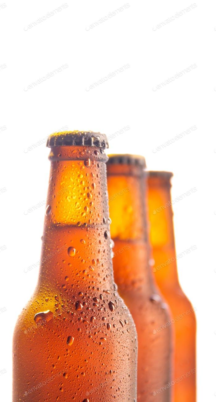 Drei frische Bierflasche auf weißem Hintergrund und Kopierraum
