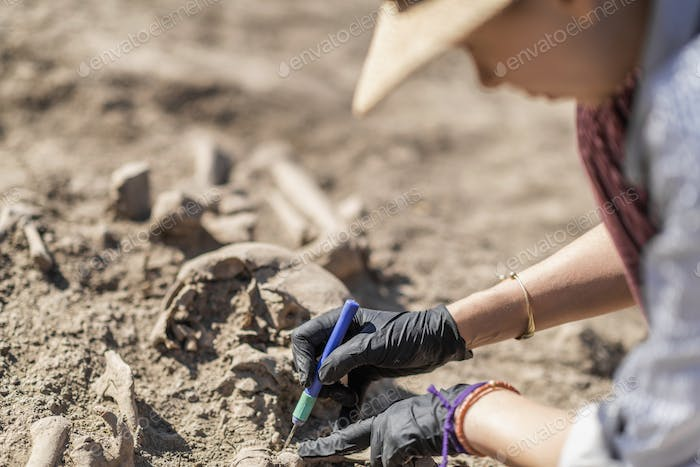 Anthropology. Anthropologist holding ancient human bones recovered from burial site.