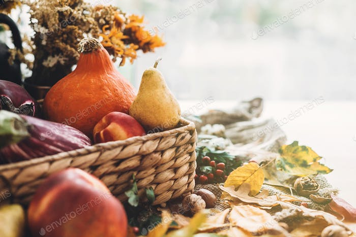 Pumpkin and vegetables in basket and colorful leaves