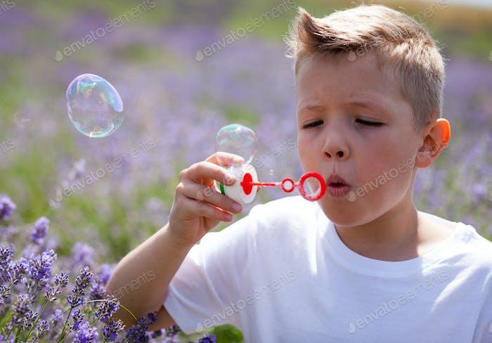 Cute boy blowing soap bubbles and having fun in lavender field