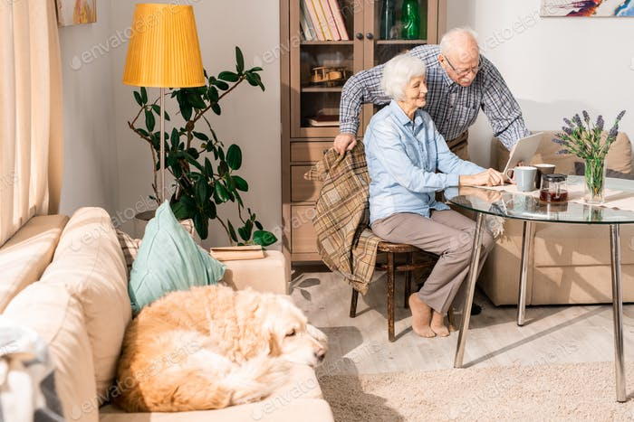 Happy Elderly Couple at Home