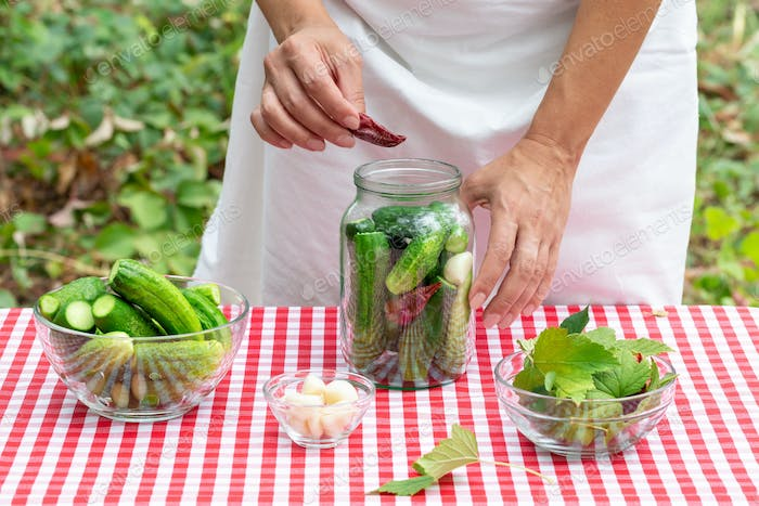 Female cook puts red pepper in a glass jar with cucumbers for preservation