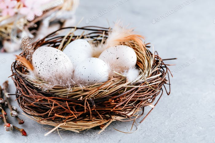 Easter eggs in the nest on gray stone  background, copy space.