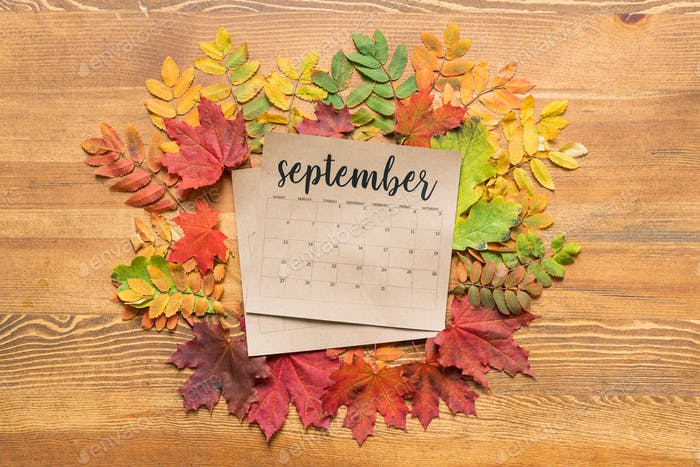 Overview of September calendar surrounded by colorful autumn leaves