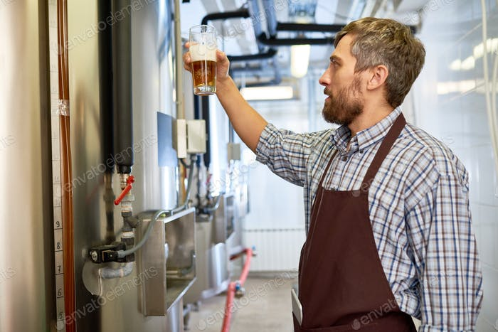 Concentrated inspector checking color of beer at factory