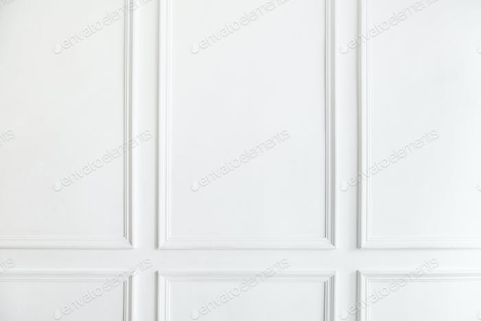 Interior white wall paneling decoration