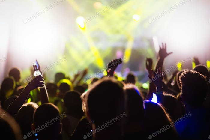 People dancing at concert