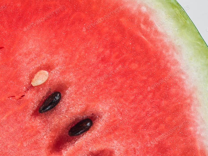 watermelon texture, copy space