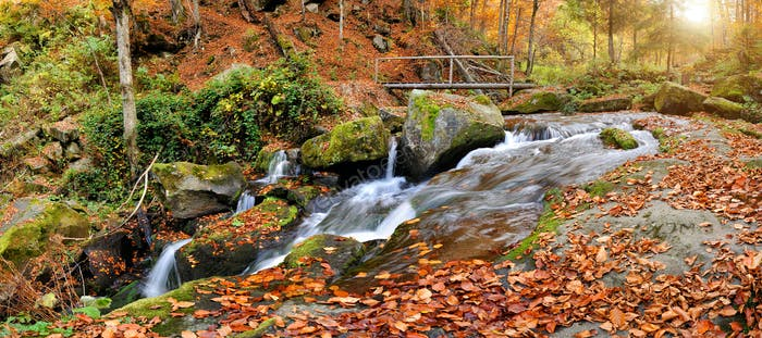 Mountain river in the autumn forest