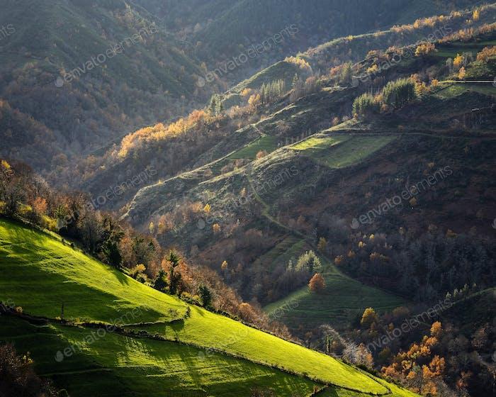 Idyllic Autumn Light Bathing the Valley