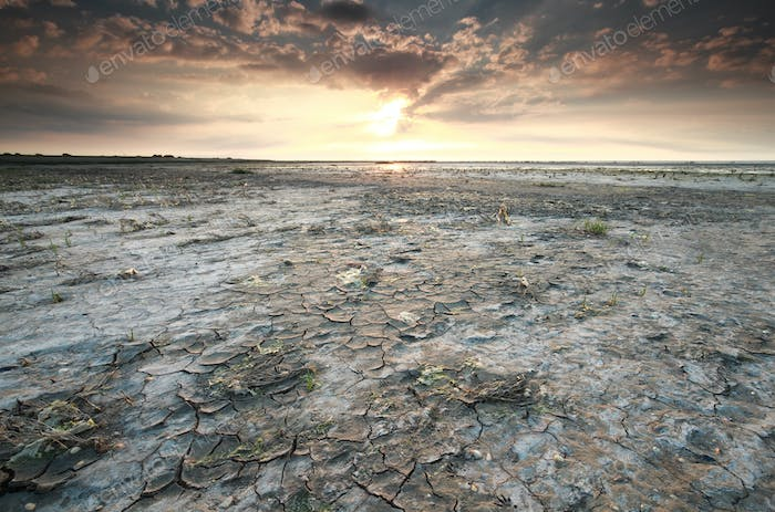 Wadden sea coast at low tide