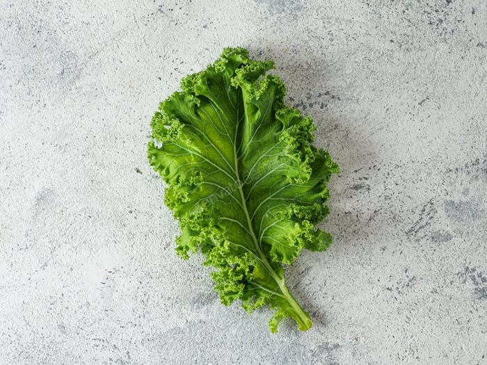 Green kale leaf on gray cement background, top view
