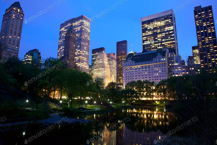 Central Park and New York City skyline