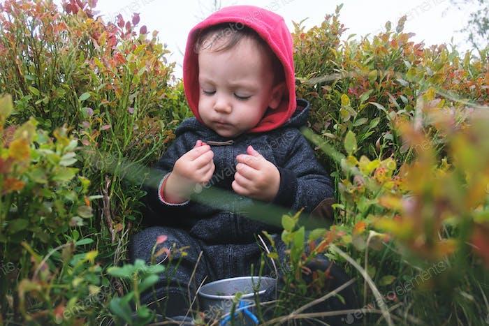 Small kid sitting on berries bushs