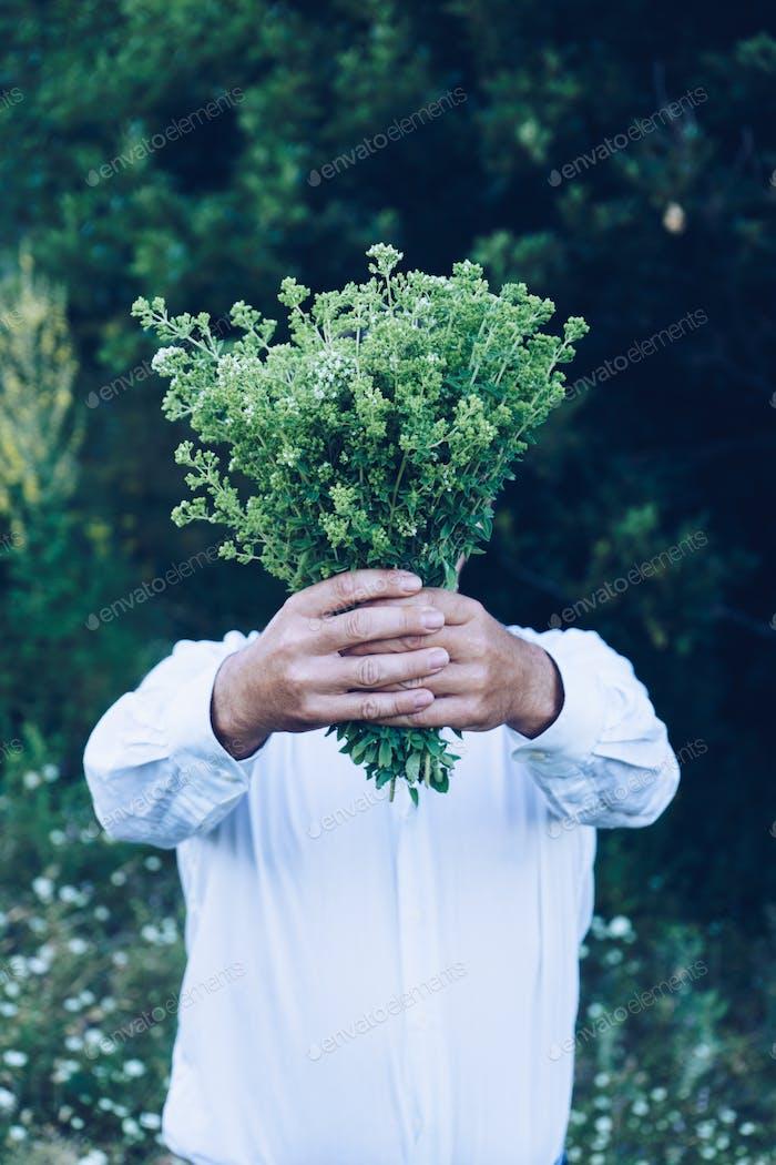 Mann hält einen Blumenstrauß oder Oregano