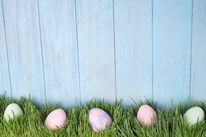 decorated easter eggs in the grass