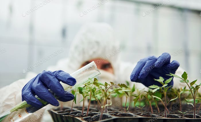 Young worker in full white protective uniform watering plants by using test tube