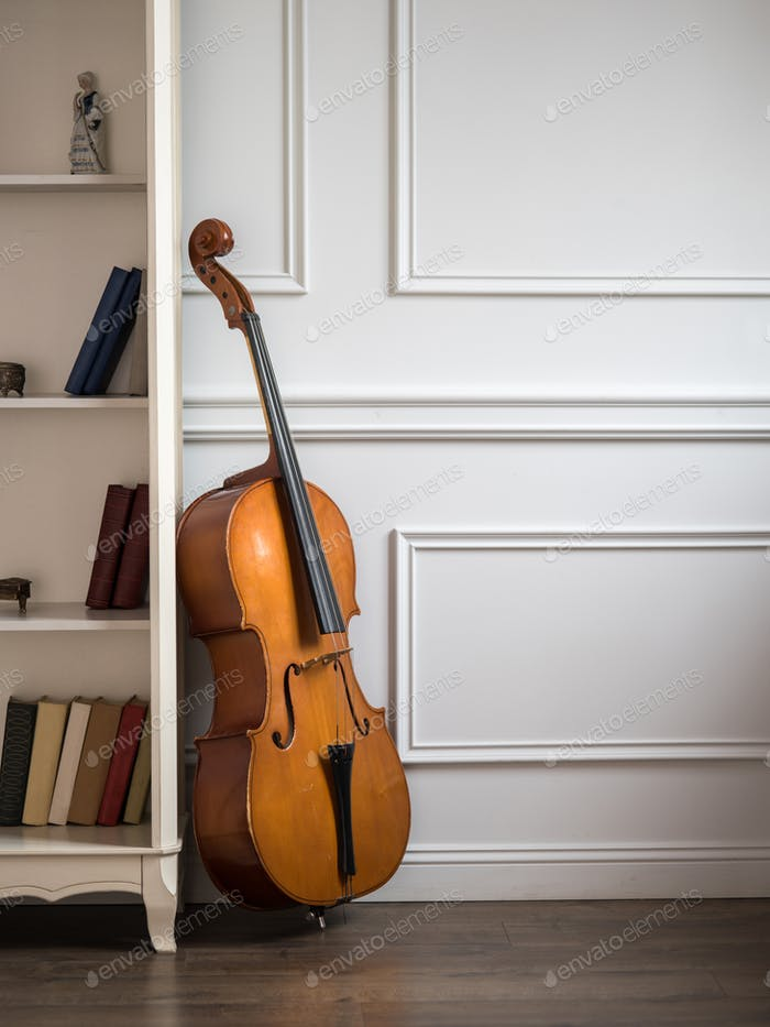 Cello in classical interior with bookshelf