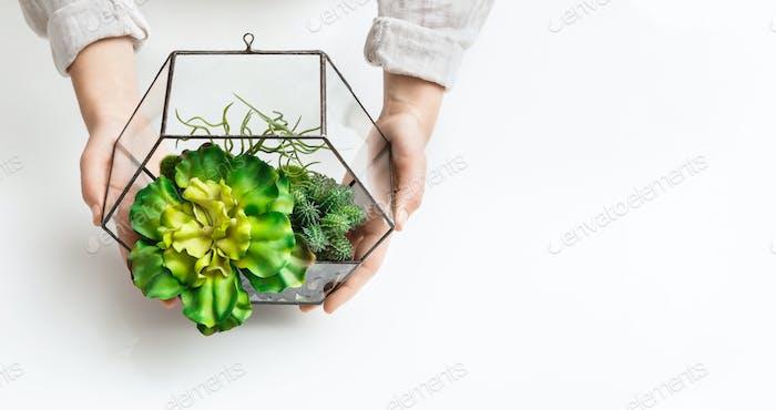 Mini garden concept