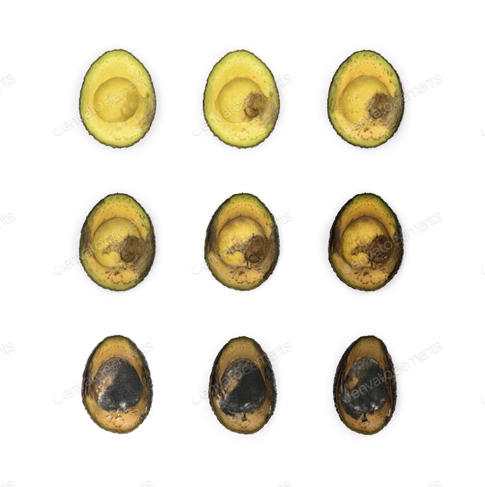 Avocado slices in sequence decaying against white background