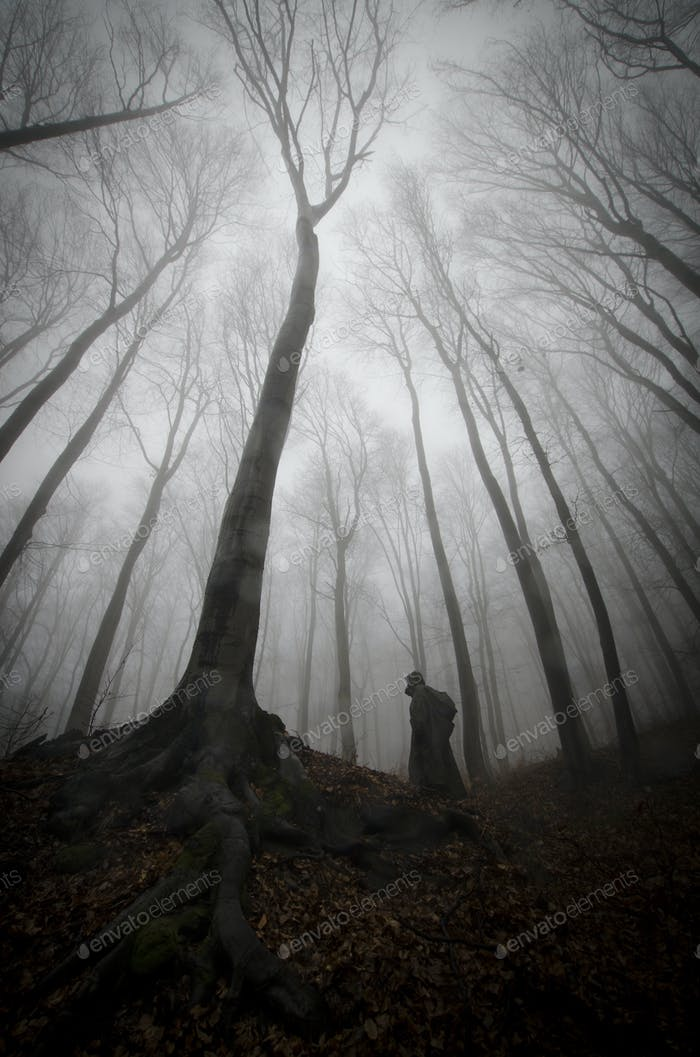 Spooky silhouette near giant tree in haunted mysterious forest with fog