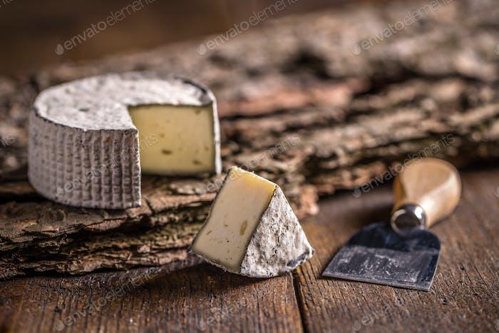 Camembert, soft cheese