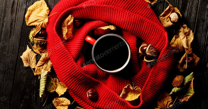 Leaves and nuts around scarf and beverage