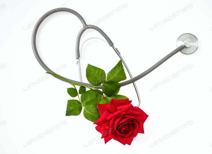 Stethoscope and red rose with green leaves on white background, top view