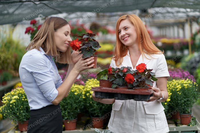 Two women discussing flowers in a green house holding a flower pot