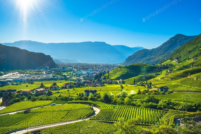 Vineyards view in Santa Maddalena Bolzano. Trentino Alto Adige S