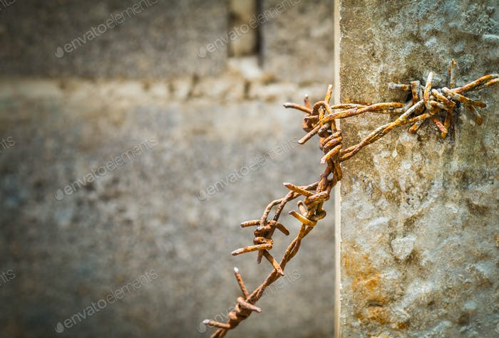 Old barbed on a pillar