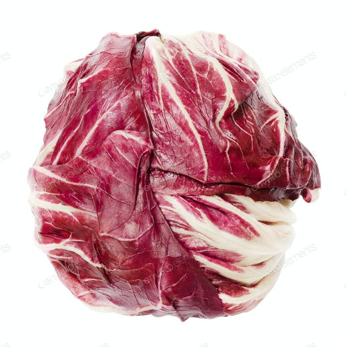 Radicchio, Italian chicory, from above isolated over white
